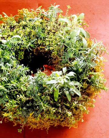 Wreaths festooned with living herbs make wonderful decorations indoors and out.
