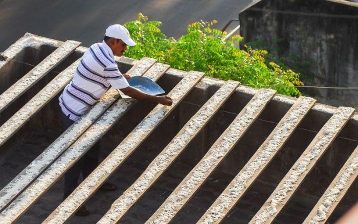 #интересное  Пожилой индиец устроил столовую для 4000 попугаев (9 фото)   Житель индийского города Ченнаи устроил настоящую птичью столовую рядом со своим домом. 62-летний Секар зарабатывает на жизнь ремонтом фотоаппаратов и в среднем его дневной заработок состав�