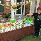 Fiestas infantiles Minecraft