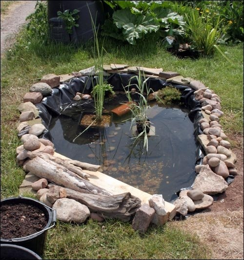 1000 ideas about small backyard ponds on pinterest for Small garden with pond design