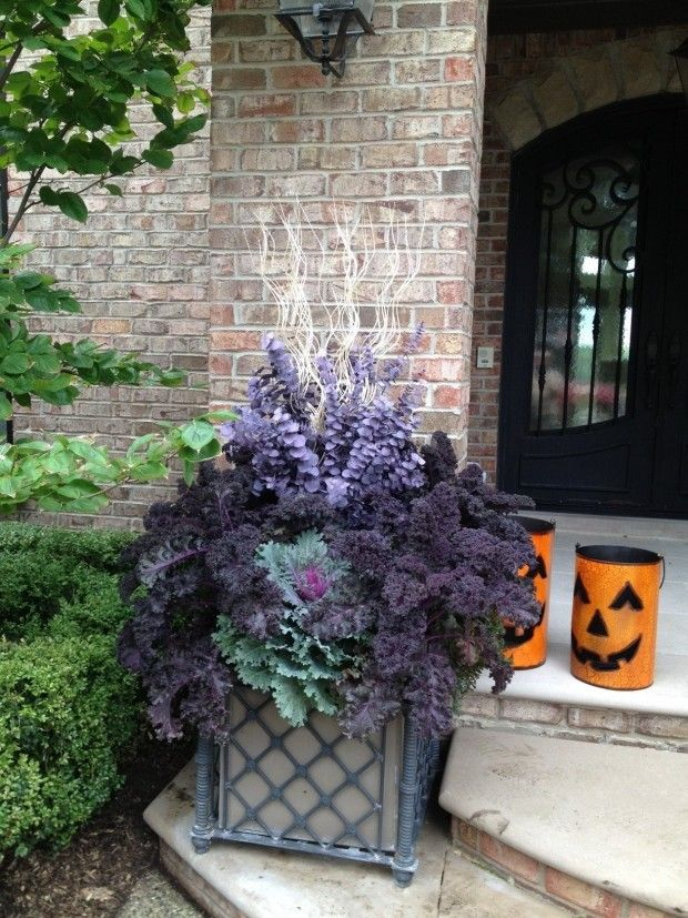 fall container plantings (5)                                                                                                                                                     More