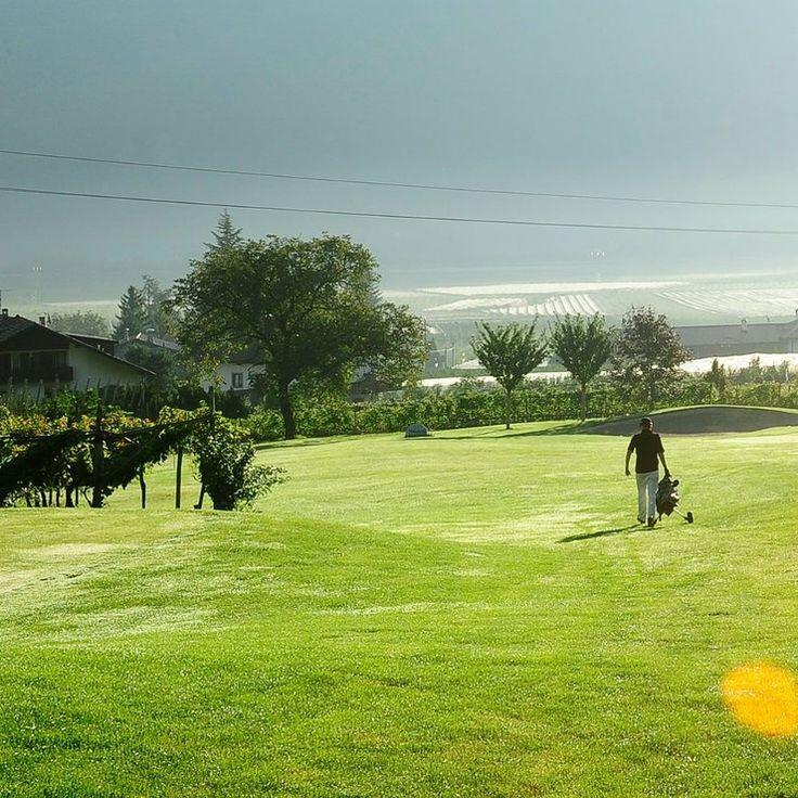 Golf, Südtirol, Meraner Land