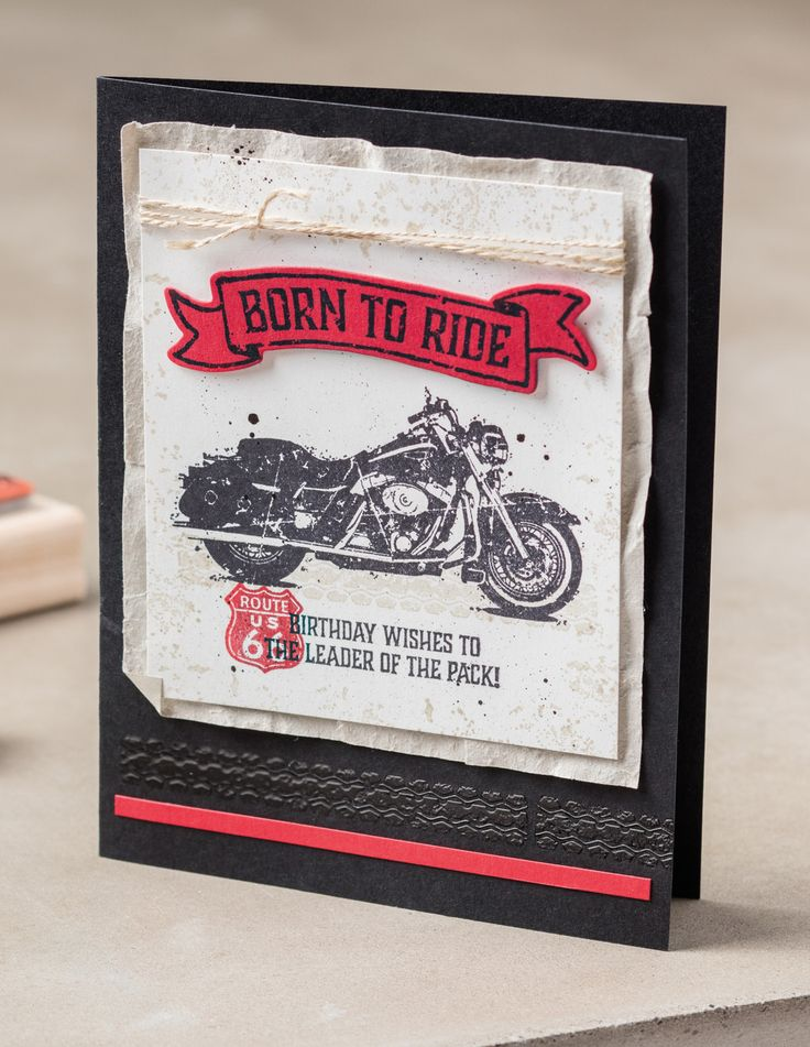 Kathryn's Stampin' World: CASE-ing the Catty One Wild Ride - CTC93