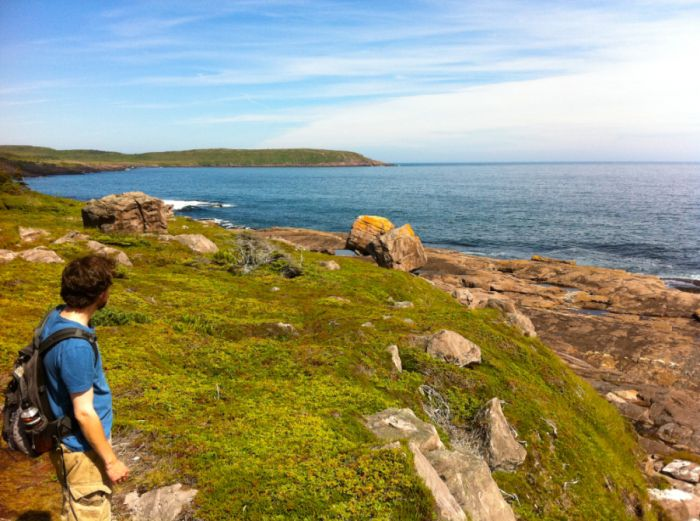 Thoughts of home: A Newfoundland Guide
