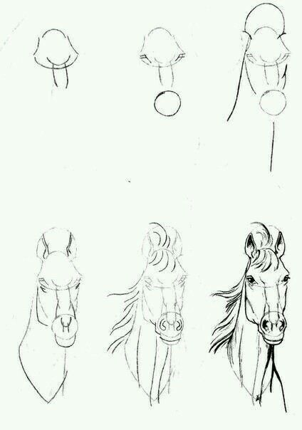 Dibujo caballo hacer