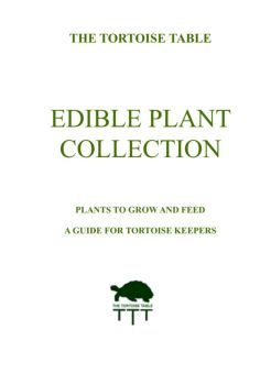 EDIBLE PLANT COLLECTION - The Tortoise table
