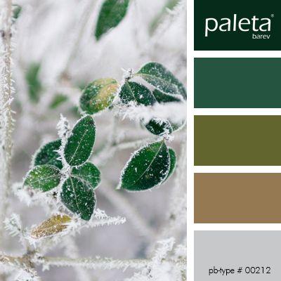 PALETA #00201 - #00250