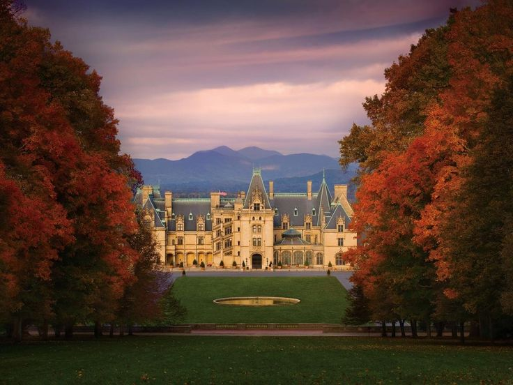 Biltmore Estate Asheville, North Carolina Architecture autumn building Elegant Exterior extravagant Fall fall colors Fall leaves fancy foliage golden hour Greenery Historic isolation Luxury Mountains Nature Outdoors regal remote Scenic views sophisticated Sunset trees Trip Ideas view tree grass sky season plant leaf morning evening woody plant flower château castle dusk sunlight cityscape Forest lush