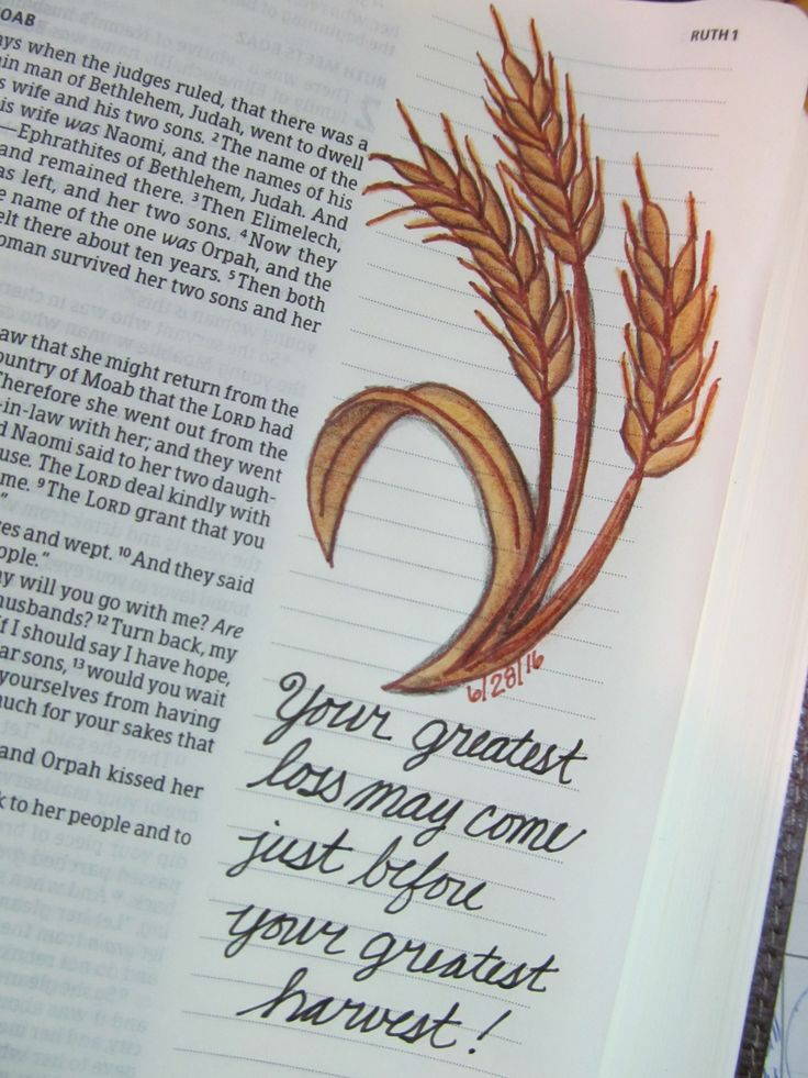 One of my favorite books of the Bible, Ruth. So much to learn in this book!