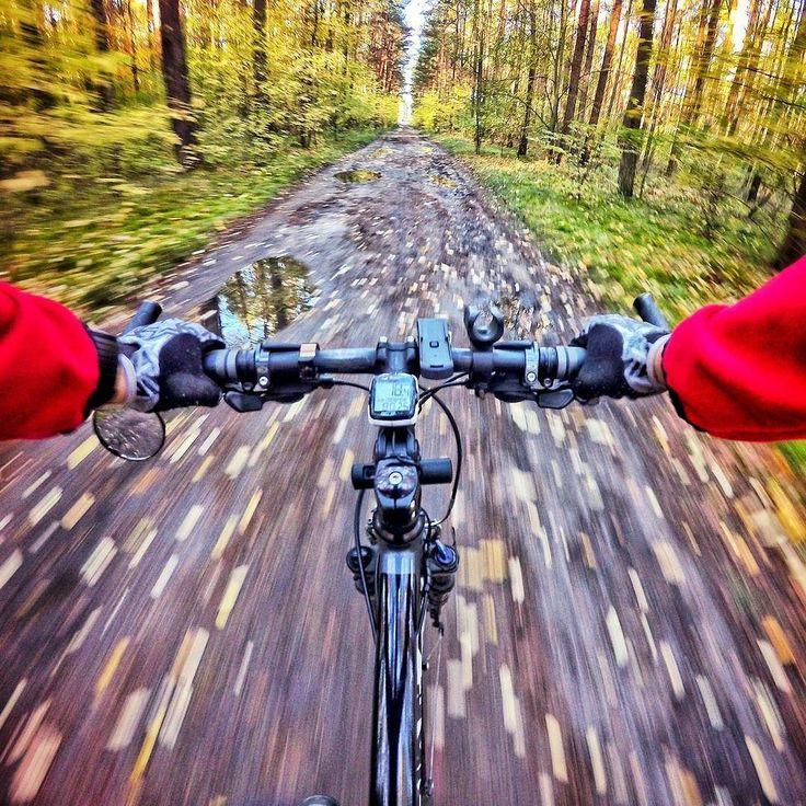 Prosto w jesień! Choć mieliśmy już (brrr!) przedsmak zimy. Jak się jeździ w takich warunkach? Świetnie  trzeba tylko pamiętać o odpowiedniej ochronie. Głowa ręce kolana palce są szczególnie wystawione na wychłodzenie. Jesienią lubimy odbić do lasu - wiatr jest tu znacznie słabszy barwy cieszą oczy.  KTO JEŹDZI RĘKĄ DO GÓRY  :-) #cycling #rower #wirtualneszlaki #kujawskopomorskie #lubietubyc #lubiepolske #Bydgoszcz #autumn #jesień #autumncycling #forest #las #mikrowyprawy
