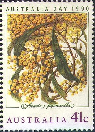 Australia Day 1990 Stamp - featuring the National Flower - Acacia Pycnantha (golden wattle). I wish I could make this into a poster.