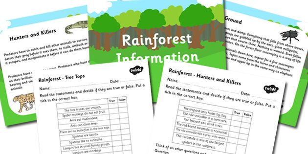 Rainforest Information Powerpoint and Worksheet Pack - rainforests, rainforest information, rainforest worksheet, rainforest powerpoint, habitats, ks2
