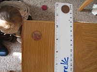 Science Matters: Projectile Motion/Gravity: Ruler and Penny