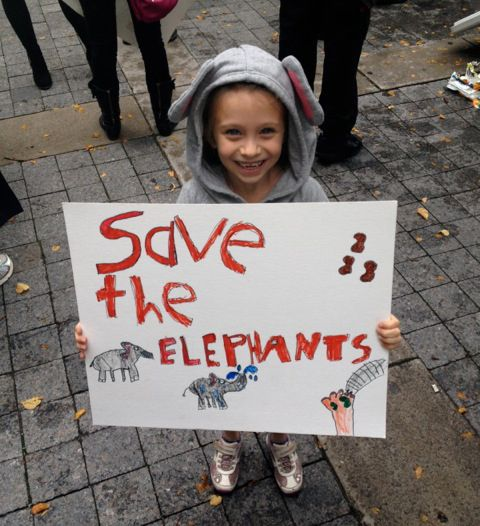 Today is #WorldElephantDay and we are sharing Ella's giving story on the #GivingLifeBlog. Little Ella's love of elephants inspired her to get charitable and give back to these endangered and majestic creatures.  #elephants #donate