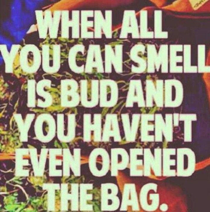 Oh, man, this has happened to me on the L and on the bus.  I'm not usually paranoid, but I was convinced people could smell the aroma of bomb-ass weed coming from an unidentified source and I looked like the most likely culprit.  #420