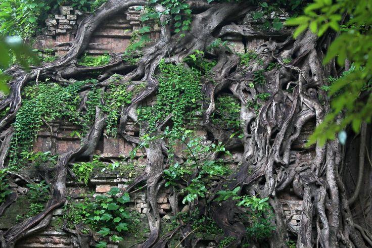 Cambogia, la meraviglia dei tempi nella foresta: Sambor Prei Kuk diventa patrimonio dell'Umanità