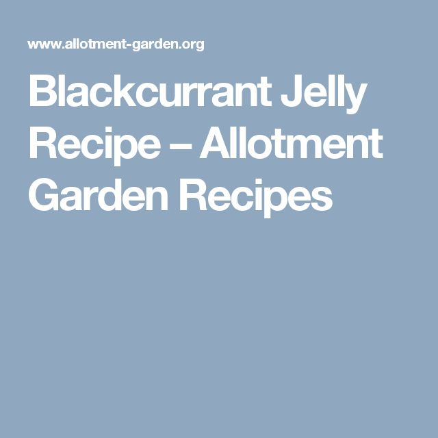 Blackcurrant Jelly Recipe – Allotment Garden Recipes