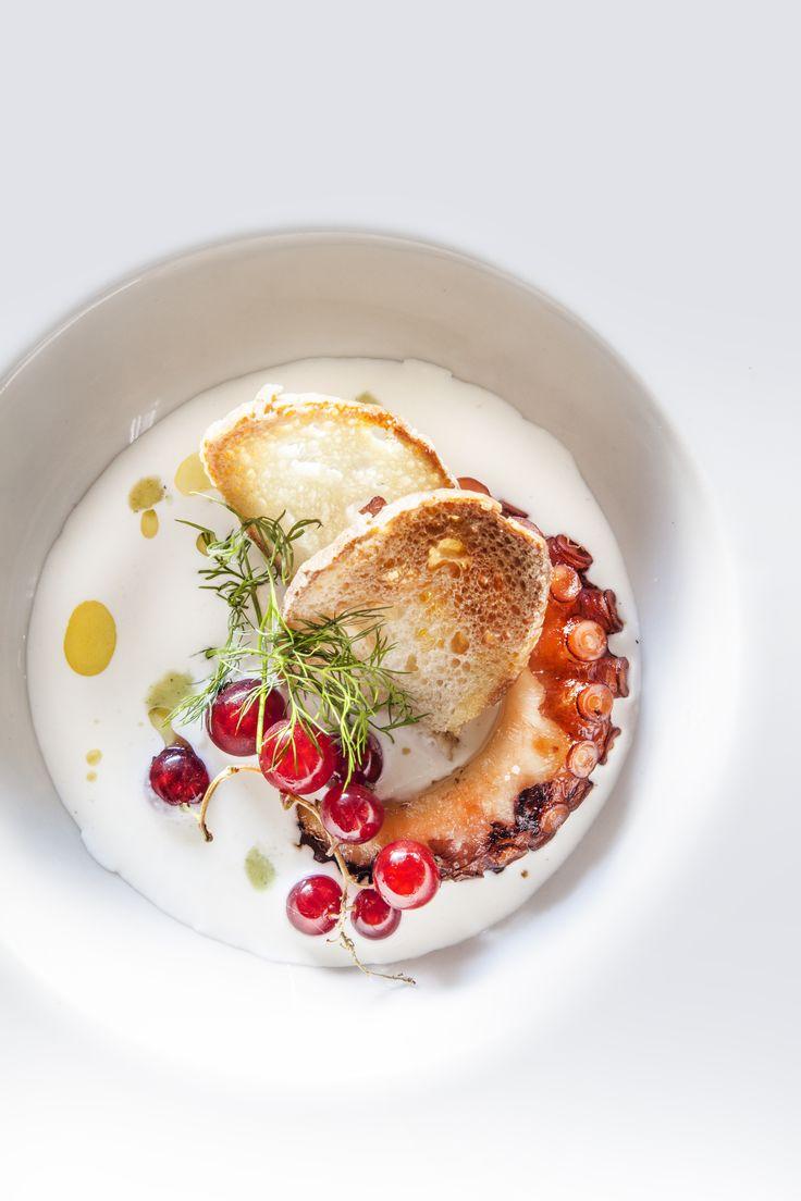 Burrata e polipo by chef Francesco Calabro
