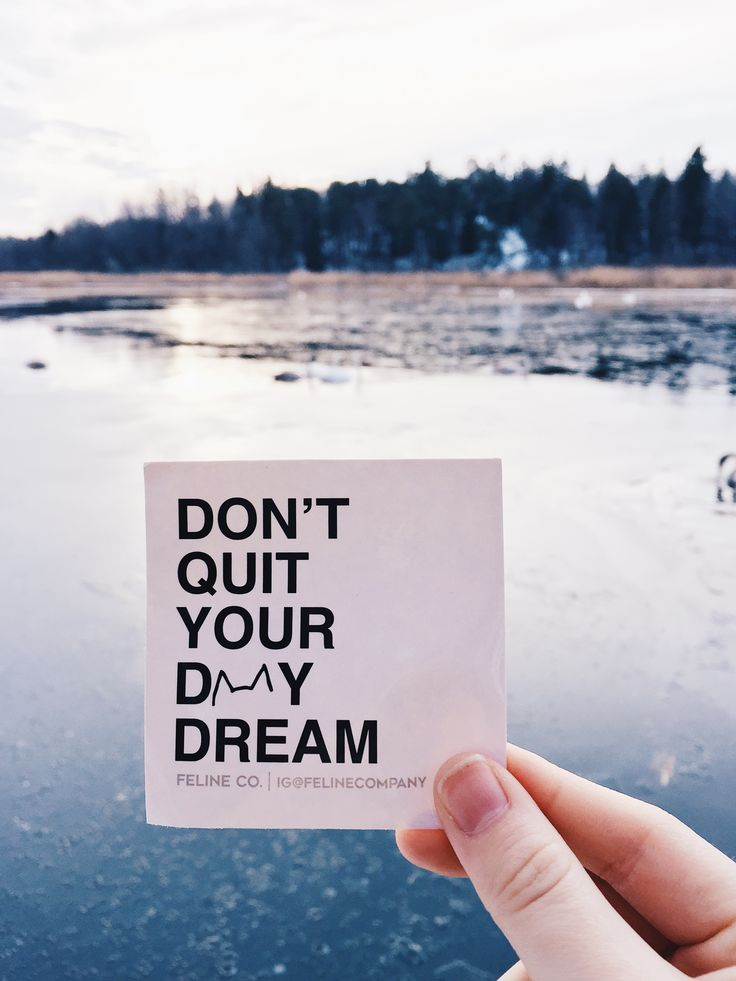 DON'T QUIT YOUR DAYDREAM - Feline Co.