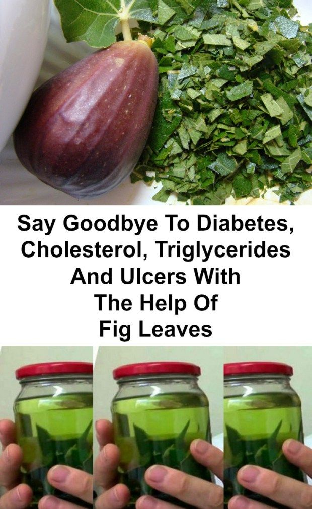 Did you know that fig leaves are best known for treating diabetes, but there are many other uses for the fig leaves?