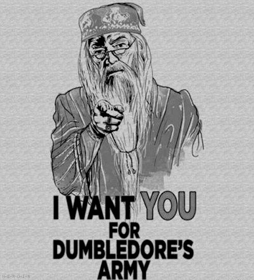 I want you for dumbledore's army!: Dumbledore Army, Signs, Hogwarts, Living Rooms, Harry Potter Parties, I Want You, House, Challenges Accepted, Posters