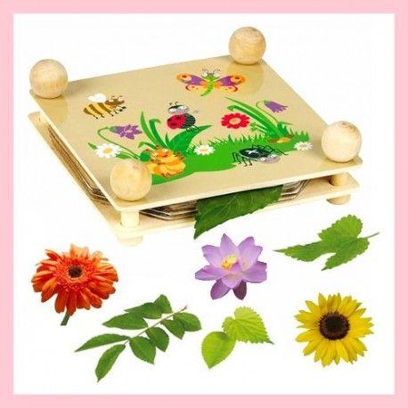 Pressa per essiccare fiori e foglie