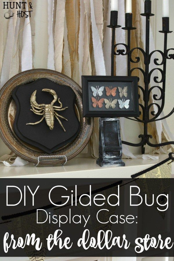 Gilded Bugs Display Case Dollar Store Halloween Decorations
