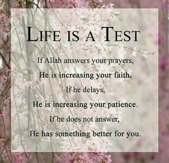 Life is a test.....