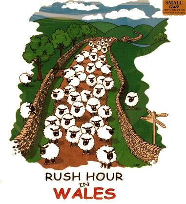 Welsh T Shirt Rushhour in Wales T. Shirt - Welsh Gifts
