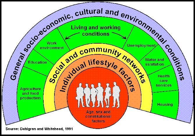 Social determinants of health are the economic and social conditions – and their distribution among the population – that influence individual and group differences in health status. They are risk factors found in one's living and working conditions (such as the distribution of income, wealth, influ...