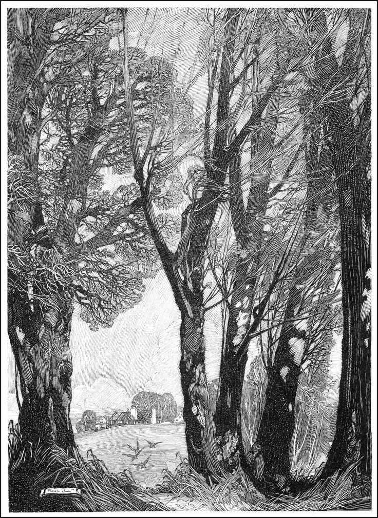 84 best draw the world franklin booth images on for Best tree drawing