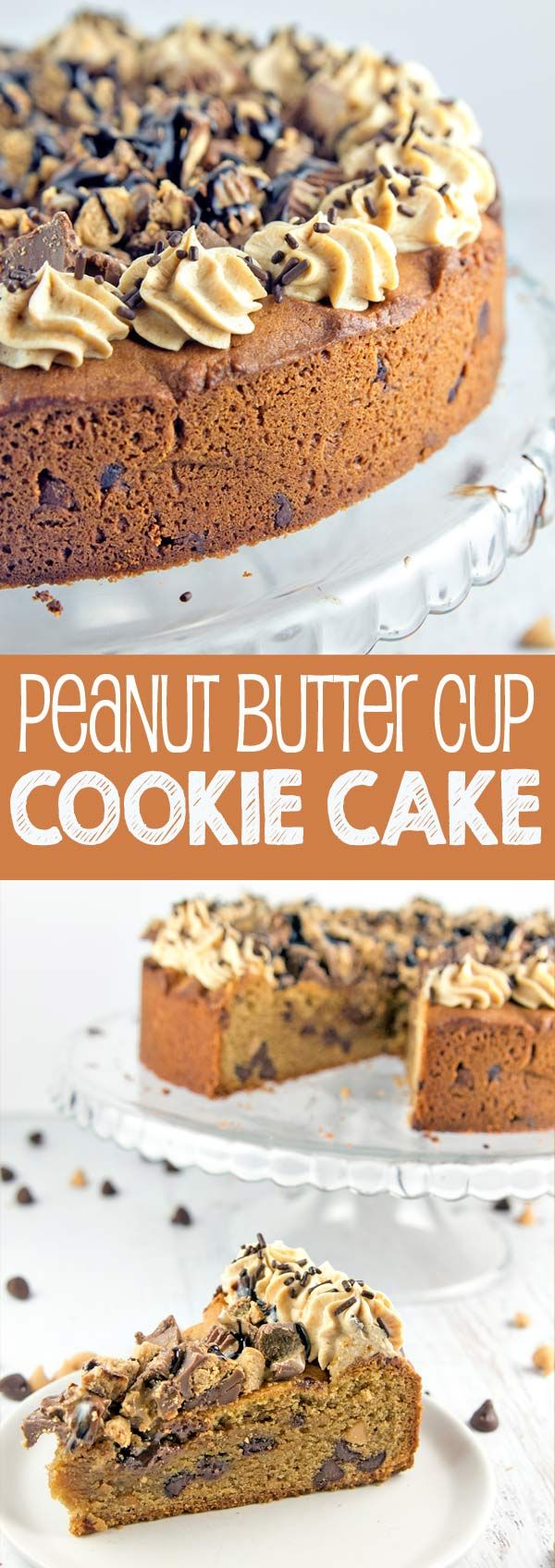 Peanut Butter Cup Cookie Cake: a peanut butter chocolate chip cookie cake, topped with whipped peanut butter ganache, chopped peanut butter cups, and chocolate and peanut butter sauces.  {Bunsen Burner Bakery}
