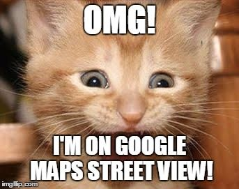 Excited Cat Meme | OMG! I'M ON GOOGLE MAPS STREET VIEW! | image tagged in memes,excited cat | made w/ Imgflip meme maker