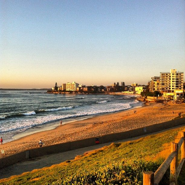 Morning Cronulla!