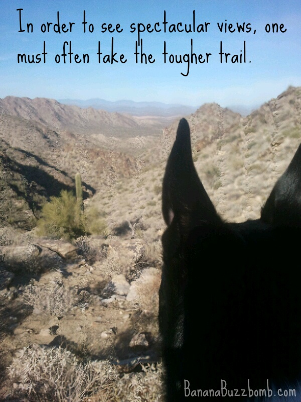 In order to see spectacular views, one must often take the tougher trail.