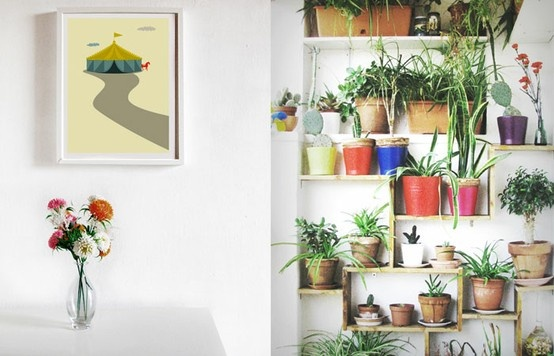 love this shelving for plants