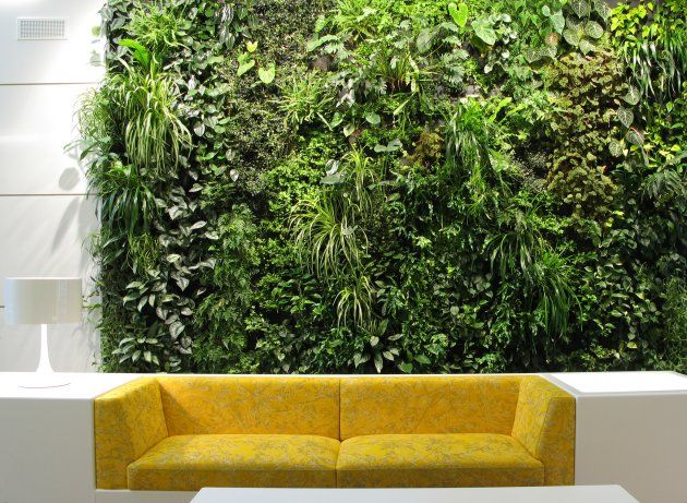 Want this: Living Walls, Idea, Green Walls, Indoor Vertical Gardens, Indoor Gardens, Interiors, Plants, Gardens Wall, Wall Gardens
