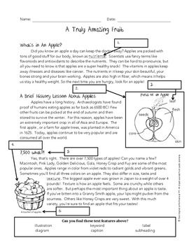 Here is a another quick worksheet I created to test student knowledge on text features. The passage is about an amazing fruit known to all of us: apples! The worksheet asks students to label what text features can used by this article.