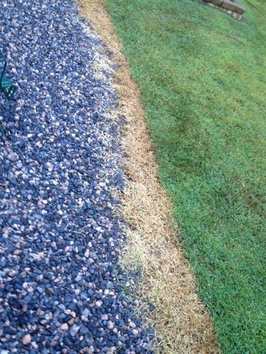 Weed killer.  1 gallon vinegar 1/2 cup salt few squirts of dawn dish soap.  Mix up spray on weeds.  Kills them in 2 hours.