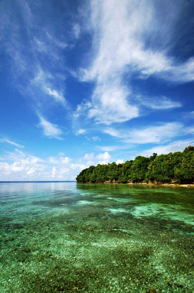 Wonderful Indonesia - Kakaban Island: Strange Stingless Jellyfish in the Derawan Archipelago