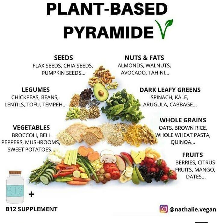 vegan food pyramid for weight loss