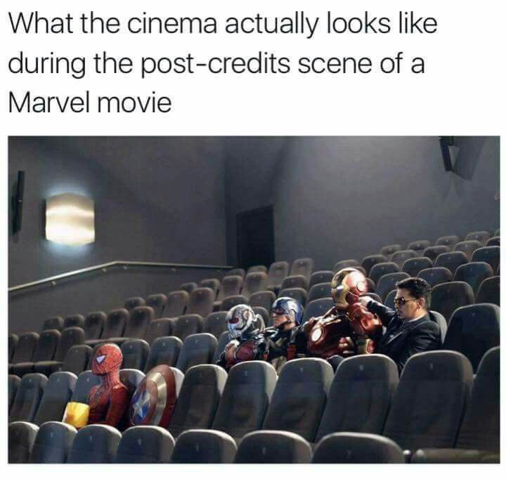Pretty much... So many people left the theater during Civil War (on opening weekend no less!) that it was basically me and my friends left. We had Disney bounded since it's cheaper and less time consuming than cosplaying, and so it DID look like this with 'costumes'. (I was Scarlet Witch!)
