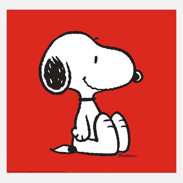 November 1975 comic strips | Peanuts Wiki | FANDOM powered by Wikia