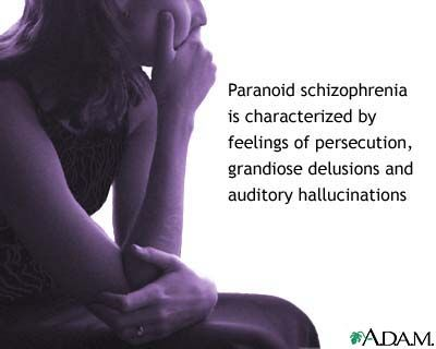 Paranoid type schizophrenia is a mental illness that involves false beliefs of being persecuted or plotted against.