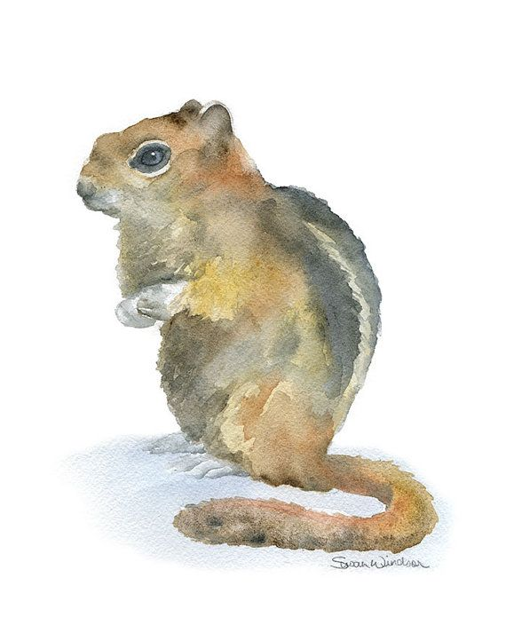 Chipmunk Watercolor Painting Giclee Print  8 x 10  by SusanWindsor