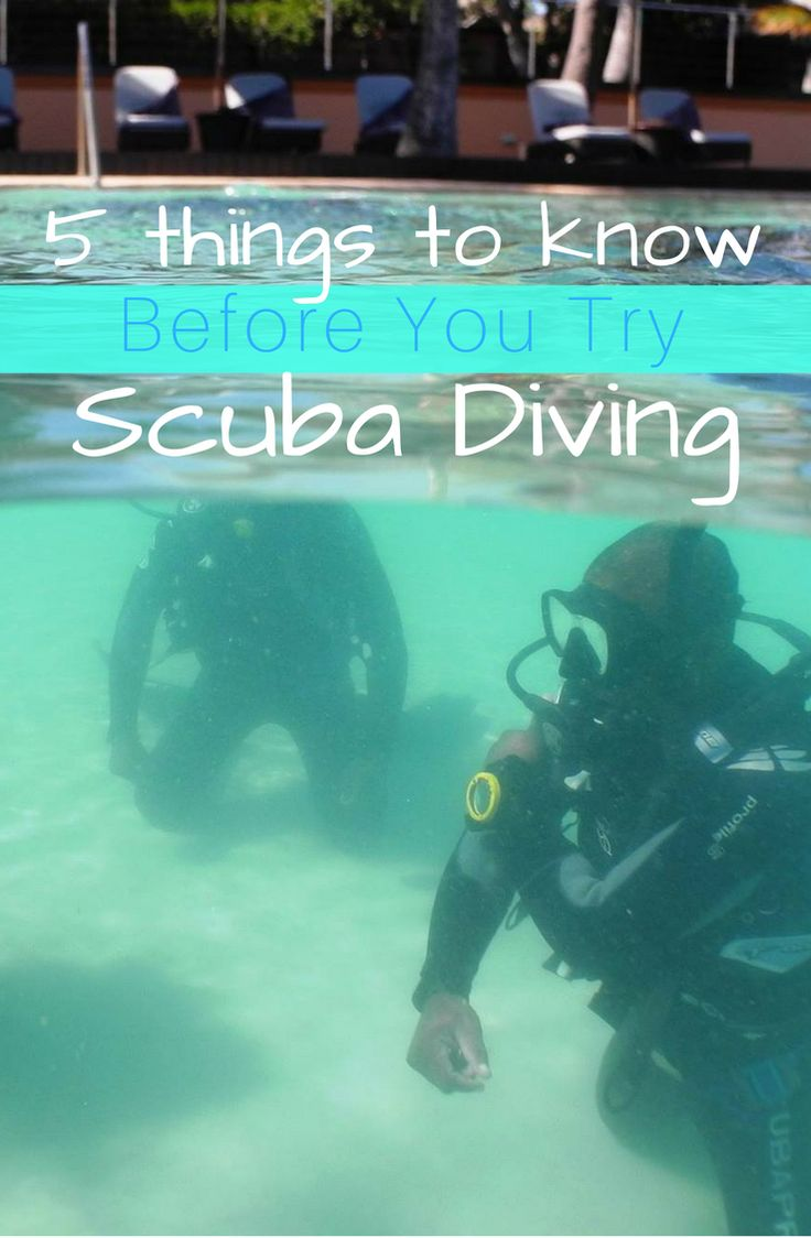 5 Tips To Know Before Your First Open Water Dive | reefdivers.io
