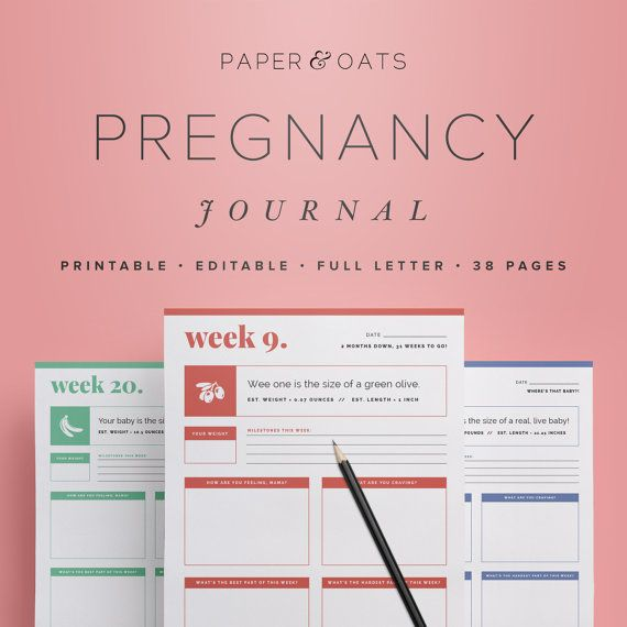 Pregnancy Journal – Editable Digital Maternity Diary, Weeks 6-42, New Mom, Baby Shower Gift,  /  Household PDF Printables