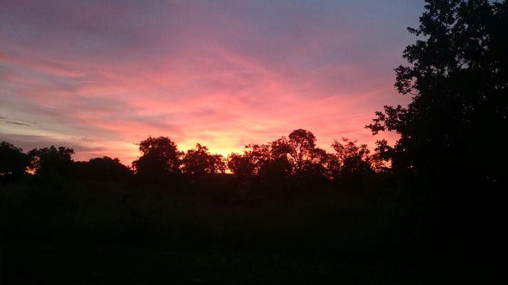 Sunset at Zebula!!