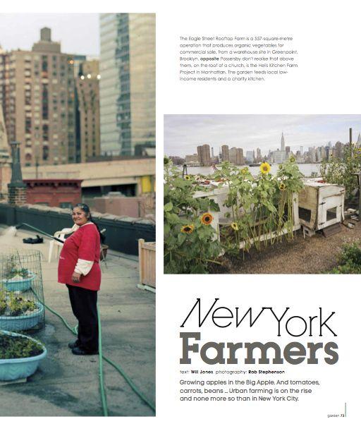 new york farmers