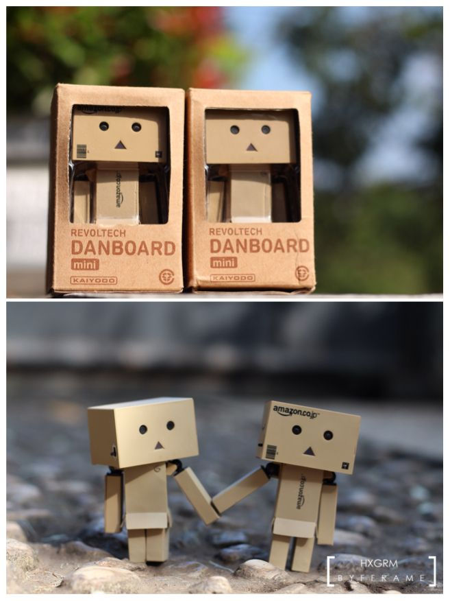 2 become 1 #danbo #danboard